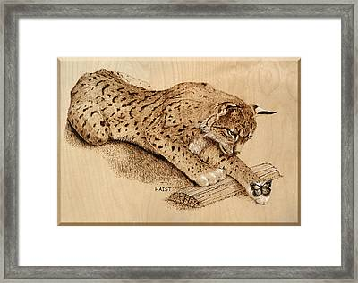 Bobcat And Friend Framed Print by Ron Haist