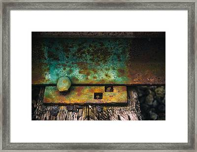 Bolted Framed Print by Karol Livote