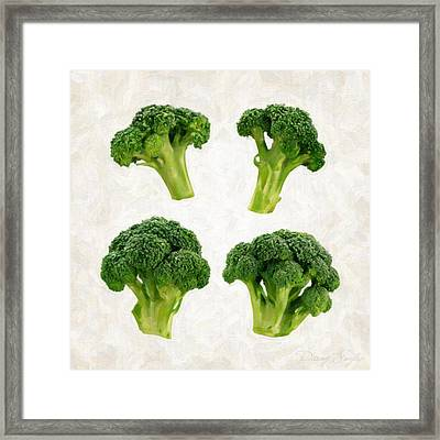Broccoli Isolated On White Framed Print by Danny Smythe