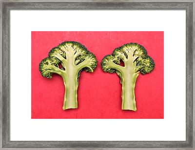 Broccoli Framed Print by Tom Gowanlock