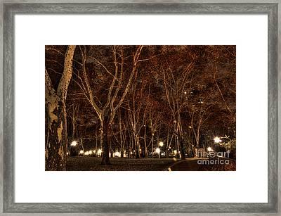 Brooklyn Park Framed Print by Mark Ayzenberg
