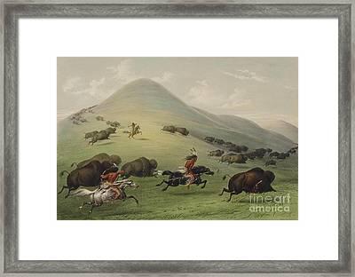 Buffalo Hunt Framed Print by Celestial Images