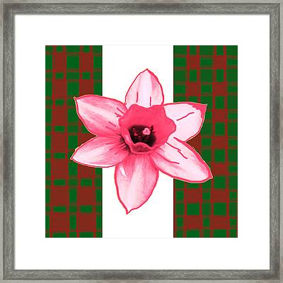 Cactus Flower By Navinjoshi And An Elegant Decorative Border Base To Focus The Flower Framed Print by Navin Joshi