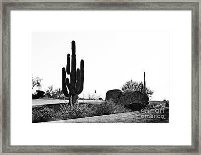Cactus Golf Framed Print by Scott Pellegrin