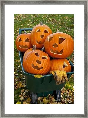 Carved Pumpkins In Wheelbarrow Framed Print by Jim Corwin