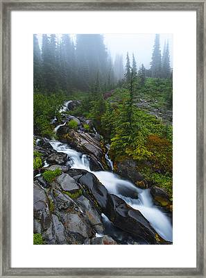 Carvings Of Nature Framed Print by Ryan Manuel