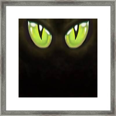 Cat Eyes Framed Print by Kevin Middleton