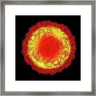 Caulobacter Bacteriophage Framed Print by Mehau Kulyk