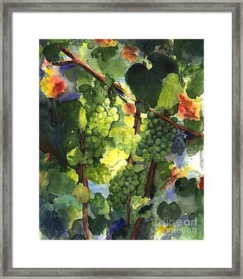 Chardonnay Au Soliel Framed Print by Maria Hunt