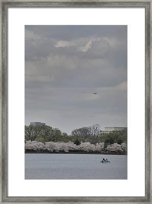 Cherry Blossoms - Washington Dc - 011319 Framed Print by DC Photographer