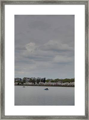 Cherry Blossoms - Washington Dc - 01134 Framed Print by DC Photographer