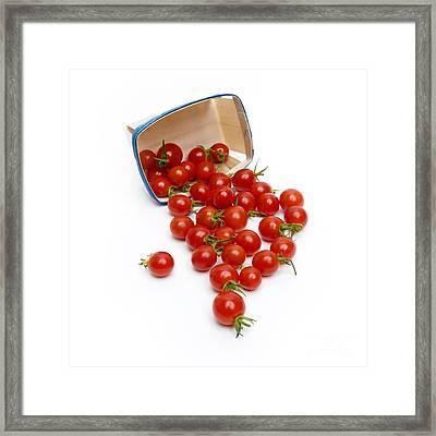 Cherry Tomatoes Framed Print by Bernard Jaubert