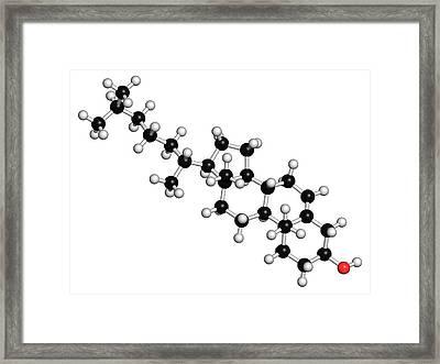 Cholesterol Molecule Framed Print by Molekuul