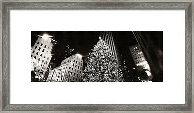 Christmas Tree Lit Up At Night Framed Print by Panoramic Images