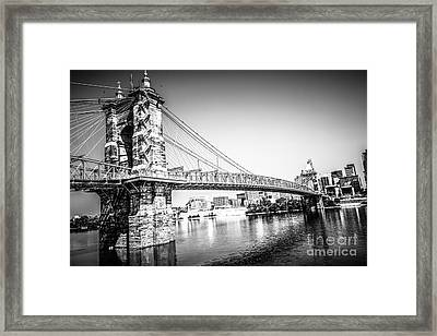 Cincinnati Roebling Bridge Black And White Picture Framed Print by Paul Velgos