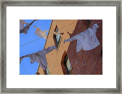 Cleaning Day 1 Framed Print by Scott Campbell