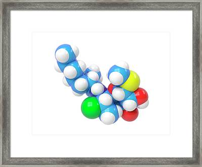 Clindamycin Antibiotic Molecule Framed Print by Indigo Molecular Images