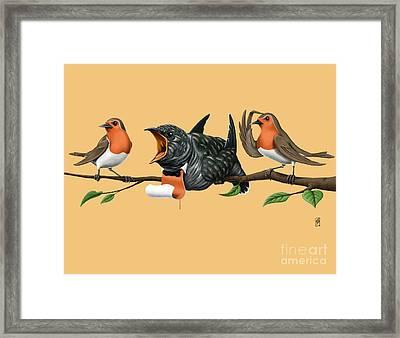 Cock Robin Colour Framed Print by Rob Snow