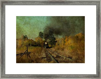 Coming Up The Tracks Framed Print by Carolyn Dalessandro
