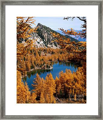 Cooney Lake And Martin Peak Framed Print by Tracy Knauer