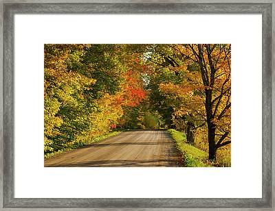Country Road In Autumn  West Bolton Framed Print by David Chapman