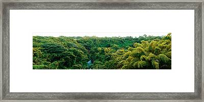 Countryside, Mauritius Island, Mauritius Framed Print by Panoramic Images