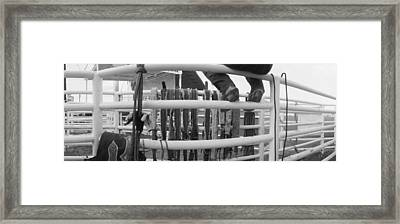 Cowboy With Tacks At Rodeo, Pecos Framed Print by Panoramic Images