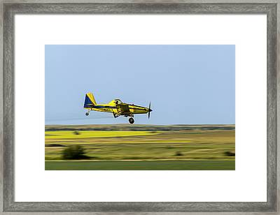 Crop Duster Airplane Spraying Flax Framed Print by Chuck Haney