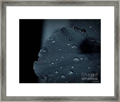 Feel The Rain Framed Print by Marija Djedovic