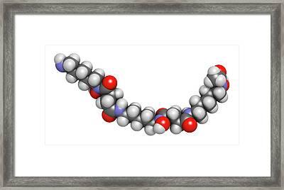 Deferoxamine Drug Molecule Framed Print by Molekuul
