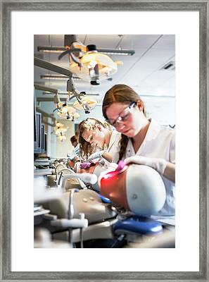 Dentistry Training Framed Print by Gustoimages