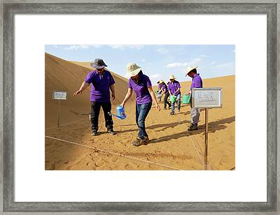 Desertification Prevention Research Framed Print by Thierry Berrod, Mona Lisa Production