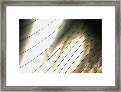 Disney Concert Hall 13 Framed Print by Micah May