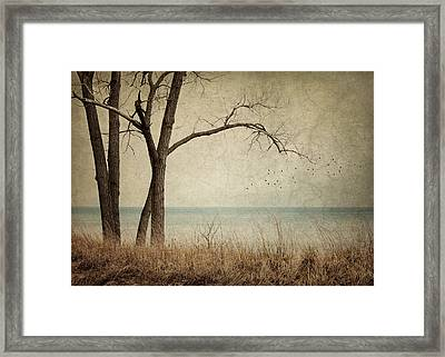 Drifting Framed Print by Amy Weiss