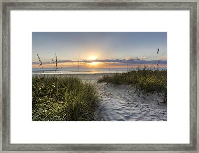 Dune Trail Framed Print by Debra and Dave Vanderlaan