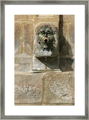 Duron Fontain Framed Print by Leo Cavallo