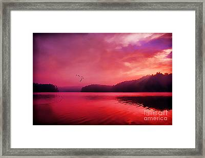 Early To Rise Framed Print by Darren Fisher