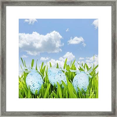Easter Eggs In Green Grass Framed Print by Elena Elisseeva
