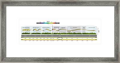 Electromagnetic Spectrum Framed Print by Carlos Clarivan