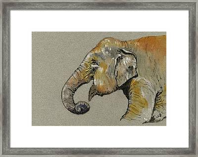 Elephant Indian Framed Print by Juan  Bosco