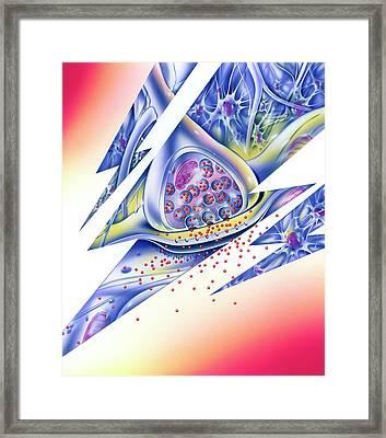 Epilepsy Framed Print by John Bavosi