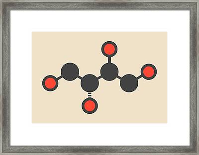 Erythritol Non-caloric Sweetener Molecule Framed Print by Molekuul