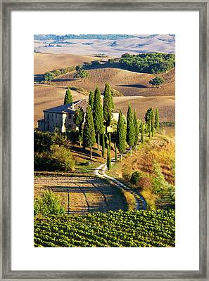 Europe, Italy, Tuscany, San Quirico Framed Print by Terry Eggers