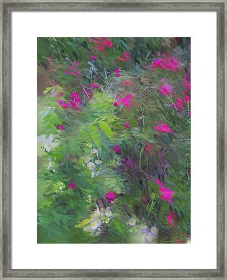 Expression Of Impressionism Framed Print by Rick Todaro