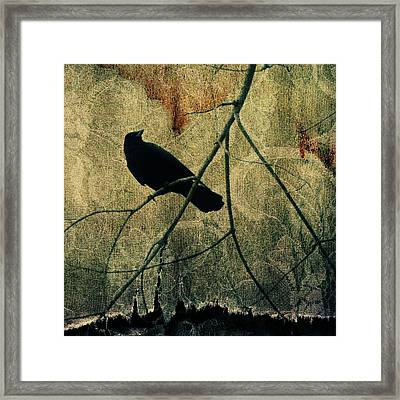 Fade  Framed Print by Gothicolors Donna Snyder