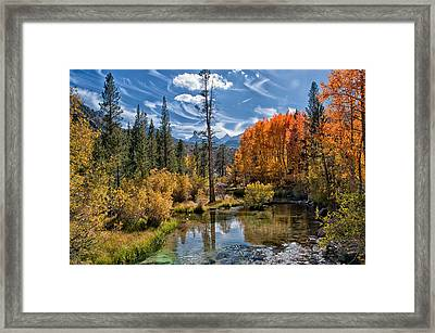 Fall At Bishop Creek Framed Print by Cat Connor