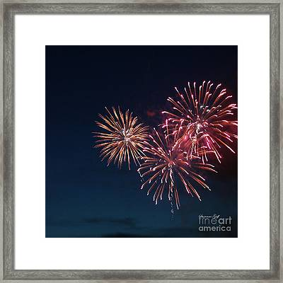 Fireworks Series Vi Framed Print by Suzanne Gaff