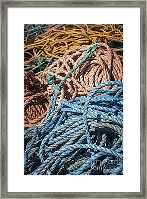 Fishing Ropes Framed Print by Elena Elisseeva