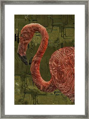 Flamingo Framed Print by Jack Zulli