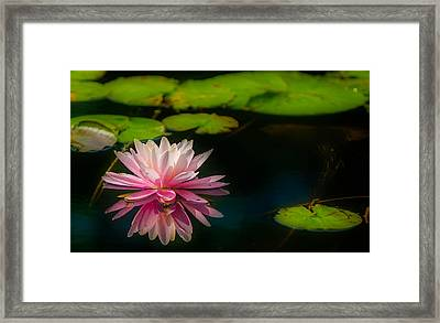 Floating Framed Print by Ken Beatty